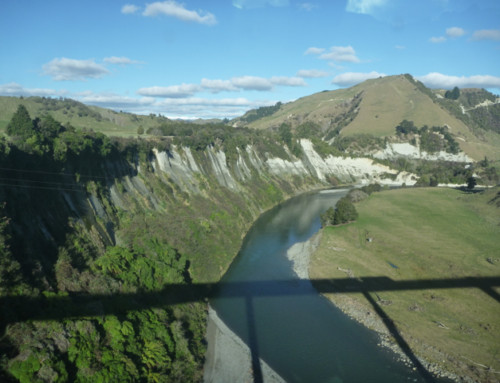 Slowing Down the Ride – Auckland to Wellington on the Northern Explorer Train